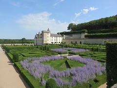 Castle of Villandry. The gardens. (Traveling with Simone) Tags: tree grass trees arbres châleau villandry france jardins gardens formal view composition wall mur lavender lavende