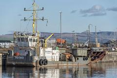 MV NORMA (fordgt4040) Tags: mvnorma boskaliswestminsterltd vessel ship boat nautical workboat moored berthed alongside nikon nikond750 digitalcamera nikkorlens jameswattdock greenock westofscotland westcoast inverclyde waterinjectiondredgingmode ploughmode