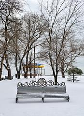 55320094 (aniaerm) Tags: snow ice frost