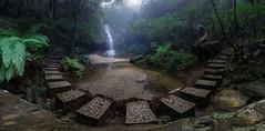 Pool of Siloam 3 || Leura (David Marriott - Sydney) Tags: bluemountains newsouthwales australia au blue mountains leura pool siloam panorama water fall waterfall walking trail fog foggy mist rain