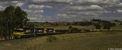 Dry as a bone (Dylan B`) Tags: qld queensland steel rail train locomotive nr class loco pn pacific national clouds grass trees