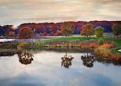 Fall Sunset (Jenny Onsager) Tags: sunset fall fallcolors reflection pondreflection lake lakecount illinois forestpreserve dusk sunburst