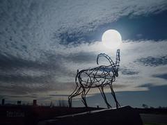 Harvest Moon at the Goat Gap Cafe (diamond-skies) Tags: goat gap cafe harvest moon full nightscape ingleton settle yorkshire dales