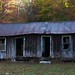 Abandoned cabin for sale-- fixer upper?