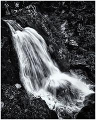 Falling... (Ody on the mount) Tags: anlässe em5ii fototour omd olympus rahmen triberg wasser wasserfall bw monochrome sw water waterfall tribergimschwarzwald badenwürttemberg deutschland de