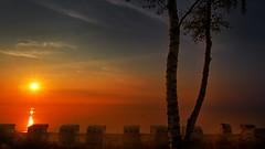 Good morning sunshine (Ostseeleuchte) Tags: goodmorningsunshine sunriseatthebeach balticsea ostsee haffkrug gutenmorgensonnenschein einneuermorgen sonnenaufgangamstrand morninglight morgenlicht strandkörbeinreihundglied beachchairs sun water sky sonnewasser himmel norddeutschland schleswigholstein ostseeküste baum birke