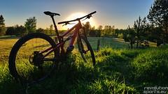 Bike-Sport-in-Berlin-by-Bike-Werk-RiderRacer-Bike-School-17