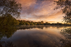 Pastel Dawn (Tracey Whitefoot) Tags: 2018 tracey whitefoot nottingham nottinghamshire colwick park lake water calm still autumn fall reflections pastel sunrise dawn trees october country reflection