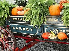 Farmer's Cart (e r j k . a m e r j k a) Tags: pennsylvania clinton farm cart harvest autumn fall roadside us30 rural country erjk