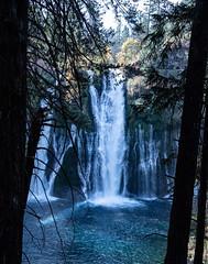 Falls_119914 (gpferd) Tags: water waterfall burney california unitedstates us