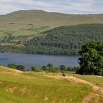 Vue sur le Loch Lomond entre Tarbet et Inverarnan, Argyll and Bute, Ecosse, Royaume-Uni. thumbnail
