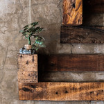Small Plant Decoration on Wall thumbnail