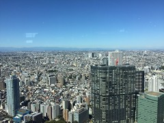 The view from the government building (carrieegibson) Tags: travel photography japan architecture tokyo