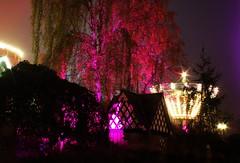 6Q3A0116 (www.ilkkajukarainen.fi) Tags: linnanmäki borgbacken lights valot colour väri low kight pieni valo vähäinen helsinki huvipuisto karuselli carucel finland finlande karnival karnevaali suomi happy life