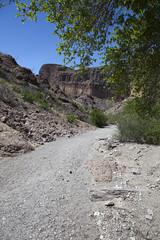 2015 - Texas (Mark Bayes Photography) Tags: bigbendnationalpark texas usa unitedstates chihuahuandesert brewstercounty nationalparkservice americannationalpark westtexas borderingmexico park track trail wash