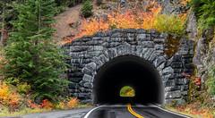 Mount Rainier Tunnels (jeff's pixels) Tags: green mountrainiernationalpark pnw autumn road tunnel auto driving nature stone nikon d850 mountrainier nationalpark car train bus