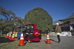 _DSC6525 (tohru_nishimura) Tags: nikond610 sigma12244556 nikon higashikoganei koganeikoen tokyo japan