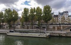 Siene / Сена (dmilokt) Tags: город city town река river пейзаж landscape dmilokt nikon d750 paris париж