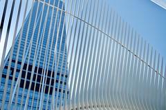 Three World Trade Center & WTC Transportation Hub, Lower Manhattan, NY (AperturePaul) Tags: santiagocalatrava newyorkcity newyork unitedstates america manhattan nikon d600 lowermanhattan worldtradecenter transportationhub oculus modern architecture station