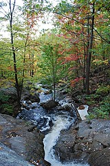 Chute-de-Luskville (Pwern2) Tags: luskville chutedeluskville luskvillefallstrail luskvillefalls eardleyescarpment ancientchamplainsea seaofchamplain precambrianrock chiefpontiac ottawanation ottawavalley clayplains josephlusk ncc landscape nature flora parks wild hiking keepitwild keepexploring exploring treesnotpeople waterfall tree forrest fallseason fall