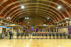 Paddington station at night (kuyu-peach) Tags: 2018 afsnikkor2470mmf28eedvr england london nikond850 paddington uk railway snap station travel