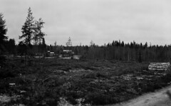 Cabin beyond cut woods (Sonofsono) Tags: cabin film finland woods black bw white graflex speedgraphic