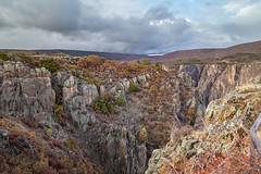 Black Canyon, Montrose, Colorado, USA (Geraldine Curtis) Tags: blackcanyon montrose colorado usa fallcolours trees firtrees clouds sunset lastlight