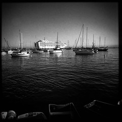 Monterey (harrysonpics) Tags: latexpeditions cruise rubyprincess hipstamataic monterey