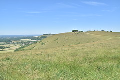 Back To Devil's Dyke (PLawston) Tags: uk britain england west sussex midsussex link border path south downs national park devils dyke escarpment
