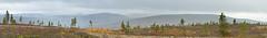 Maisema Kuotmuttipäältä (mustohe) Tags: 2018 finland lappi ukk kansallispuisto vaellus syksy tunturi fells lapland maisema landscape urhokekkonennationalpark panorama hugin rain sade canon urhokekkosenkansallispuisto autumn