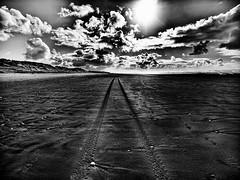 DarkTracks.jpg (Klaus Ressmann) Tags: klaus ressmann omd em1 beach foleron iaowa75mm landscape nature winter blackandwhite contrast flcnat tracks klausressmann omdem1