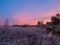 First Autumn frost (Alexey_Summer) Tags: september naturephotograph naturelovers autumn frosty frost nature meadow