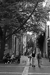 H. Conscienceplein (just.Luc) Tags: piazza plaza plein place square people mensen gens gente belgië belgien belgique belgium belgica antwerpen anvers antwerp antverpenas antuérpia amberes vlaanderen flandres flanders bn nb zw monochroom monotone monochrome bw europa europe tree boom baum arbre árbol albero