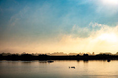 Soft Camargue Wake-up (NathalieSt) Tags: camargue europe france gard languedocroussillon brouillard brume fog fuji fujifilm leverdesoleil mist nature sunrise xt20