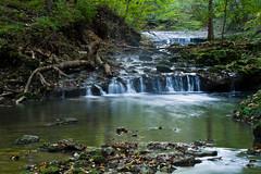 Birch Creek Cascades (ramseybuckeye) Tags: birch creek cascades glen helen nature preserve yellow springs greene county ohio rocks water leaves trees forest stream
