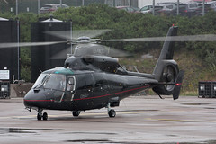 EI-PRO Aerospatiale AS-365N Dauphin 2 (corkspotter / Paul Daly) Tags: ork ipcfl aerospatiale as365n dauphin 2 eipro cn6443 executive helicopter maintenance ltd eick cork airplane tree aircraft