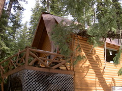 2003. Cabin damaged by falling trees. Lake of the Woods, Oregon. (USDA Forest Service) Tags: usda usfs forestservice stateandprivateforestry foresthealthprotection region6 r6 centraloregonservicecenter centraloregoninsectanddiseaseservicecenter centraloregonforestinsectanddiseaseservicecenter lakeofthewoods hazardtree dangertree blowdown kristenchadwick foresthealth pacificnorthwestregion decay forestdisease forestpathogen 2003 cabin damage tree falling
