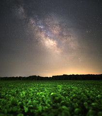 stars & soy (Neil's Astro) Tags: astrophotography astronomy landscape soy maryland stars night longexposure long exposure