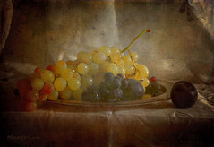 Autumn Fruits ... (MargoLuc) Tags: grapes plums golden blue fruit fall season natural lighting soft window silver vassoio shadows table texture skeletalmess classical mood vintage stilllife
