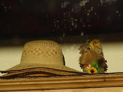 Sommerkobold (bratispixl) Tags: fotosafari faves weltweit bratispixl tele lichtwechsel schärfentiefe fokussierung bergwelt spot outdoor indoor architektur landschaft grat hügel wasser sonnenfotografie see flus tiere insekten nature nigth day spuren blumen wolken windspuren atemluft working austria schweiz italy france way fotowebcameu bergwetter indexe raindrops moon