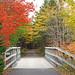 DSC03201 - Trail Bridge