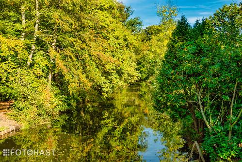 Heiligerbergerbeek in herfstkleur