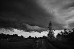 clouds, chmury (mariuszpawel) Tags: clouds chmury blackandwhitelandscape moment sky nikon krajobraz mazury polska poland noir tree