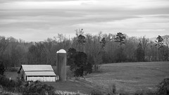 Cold Winter Day (Mr. Low Notes) Tags: sl1 100d winter bw blackandwhite monochrome outdoors sky barn farm woods trees country rural