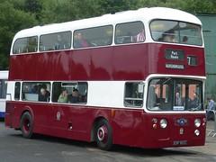 Edinburgh's first Leyland Atlantean is preserved at the Scottish Vintage Bus Museum. (calderwoodroy) Tags: edinburghbus edinburghtransport fife lathalmond scottishvintagebusmuseum esf801c doubledecker bus leylandatlantean leyland edinburghcorporationtransport scotland
