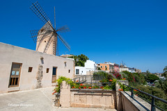 Windmills (Fabke.be) Tags: mallorca palma de balearic balear isla espana spain spanje summer explore inexplore nature colorful beautiful earth europe monument people sun sunny blue sky travel traveling life vacation holiday summerfeeling 2018 majorque amazing colors canon7dii canon 7dmk2 lens camera photography 1018 building tower tree