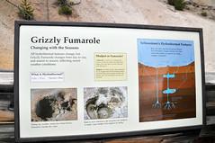 _TMY6827 (Бесплатный фотобанк) Tags: сша монтана парк йеллоустон грязевой вулкан usa yellowstone