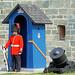 DSC02855 - Citadel Guard