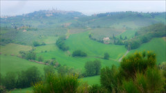 San Gimignano (kate willmer) Tags: green country fields houses town towers trees tuscany italy