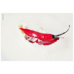 Splash, liquido, cores, objetos, movimento (luizleitefotografia) Tags: frutas chocolate morango laranja branco pingos gotas folhas vermelho amarelo liquido luz sãopaulo brasil